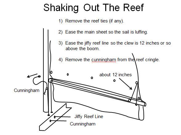 reef_8